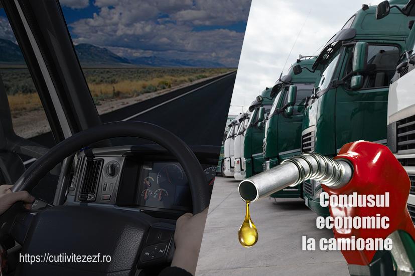 condusul economic la camioane